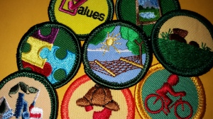Finding requirements for retired badges and interest projects use retired badges requirements solutioingenieria Gallery