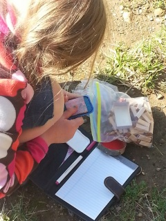 letterboxing activities