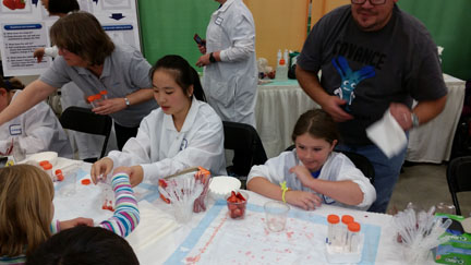 Extracting DNA from a strawberry at Celebrate Science Indiana | Detective or Home Scientist Badge Idea