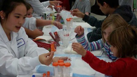 DNA experiment for kids: how to get DNA out of a strawberry | Celebrate Science Indiana