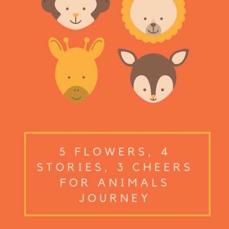 5 Flowers, 4 Stories, 3 Cheers for Animals Journey | Daisy Girl Scouts