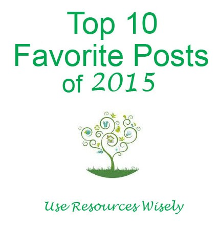 "10 Favorite Posts of 2015 on Girl Scout Leader Blog ""Use Resources Wisely"""