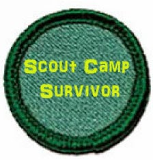 Girl Scout Camp Survivor: Why you should volunteer at scout camp.