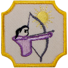 Girl Scout Ambassador council's own archery badge; visit GirlScoutShop.com and search for archery.