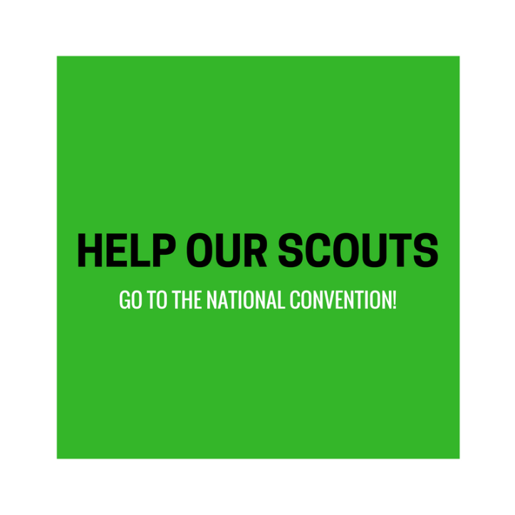 Help our girl scouts go to the national convention