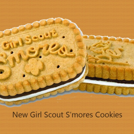 Order new Girl Scout Smores Cookies! Get s'mores cookies online.