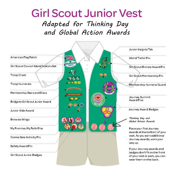 2015 girl scout junior sash badge placement